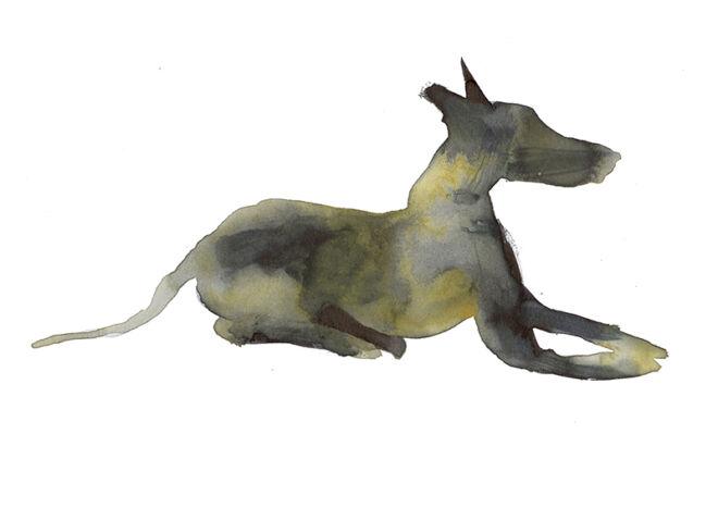 seisdedos-ilustrador-cuadernos-perro_2