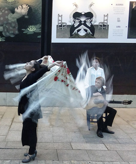exposición flamenco fui piedra